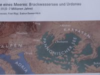 LaeerBergbauern 1 Wie Kommt Der Lehm Auf Den LaaerBerg K3 20170606 183222