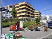 20120423 MonteLaa Blumenmarkt DSC03828