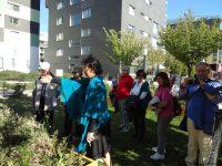 Quartiersmanagement Frankfurt In MonteLaa 20121006 152129