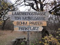 Laaer Wald 20111206 DSC09199